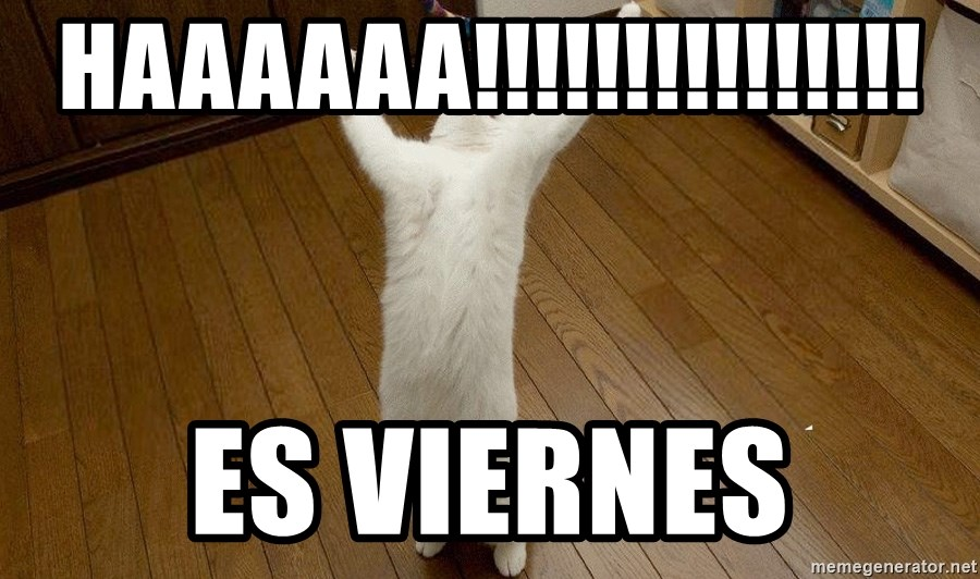 praise the lord cat - haaaaaa!!!!!!!!!!!!!!! es viernes