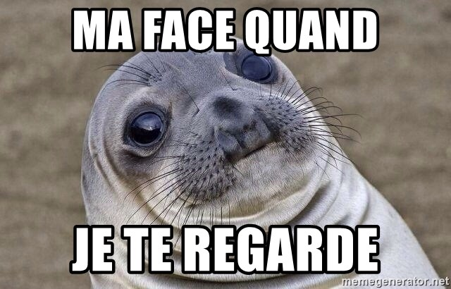 Awkward Seal - ma face quand je te regarde
