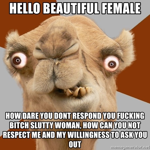 Crazy Camel lol - Hello beautiful female how dare you dont respond you fucking bitch slutty woman, how can you not respect me and my willingness to ask you out