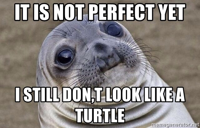 Awkward Seal - it is not perfect yet i still don,t look like a turtle