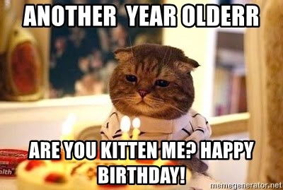 Birthday Cat - Another  Year olderr Are you kitten me? Happy Birthday!