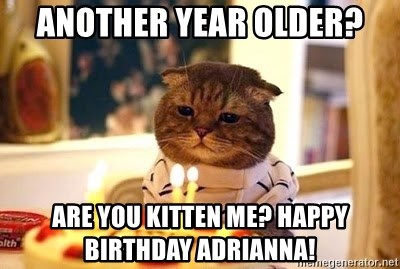 Birthday Cat - Another Year Older? Are you kitten me? Happy birthday Adrianna!