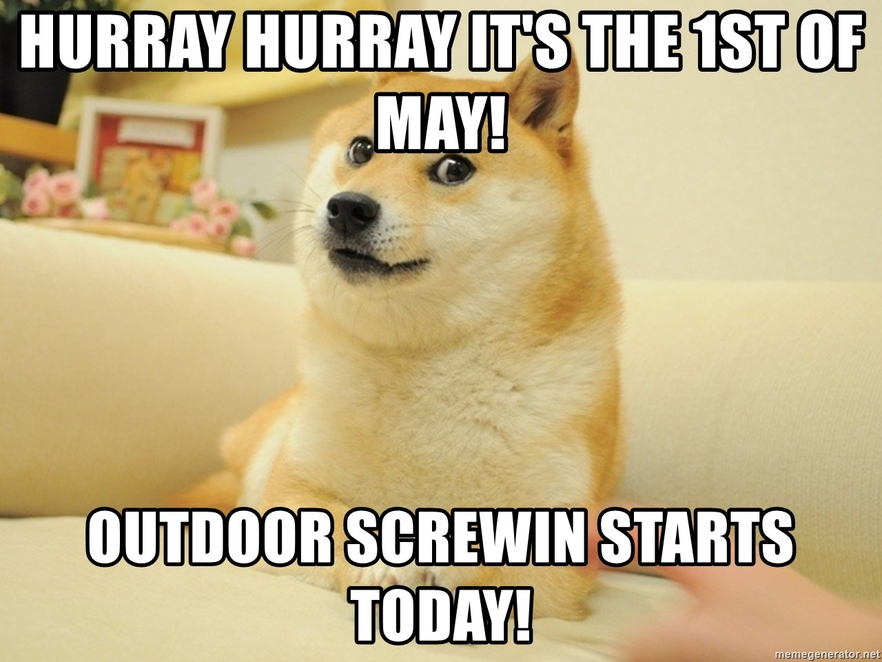 so doge - Hurray Hurray it's the 1st of May! Outdoor screwin starts today!