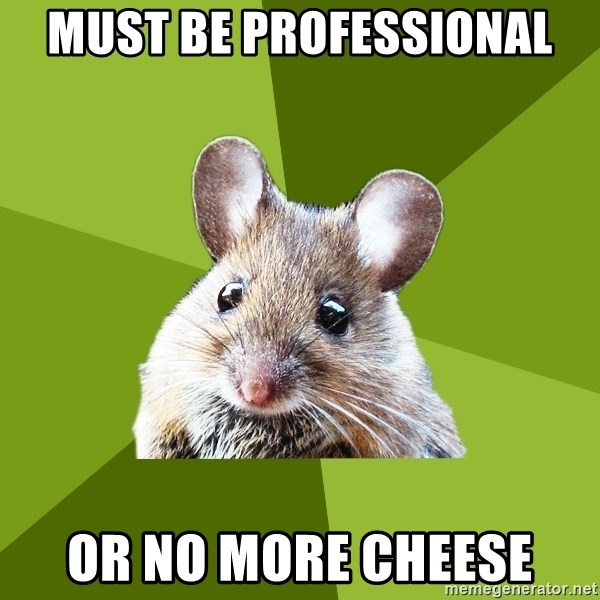 Prospective Museum Professional Mouse - Must be professional or no more cheese