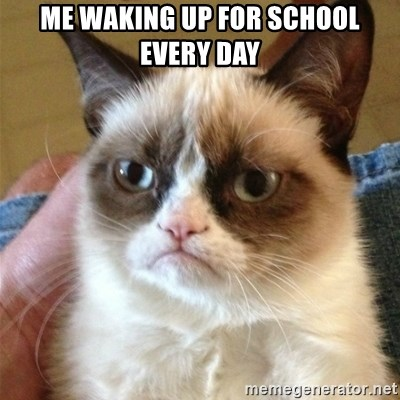Grumpy Cat  - Me waking up for school every day