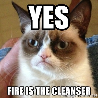 Grumpy Cat  - Yes Fire is the cleanser