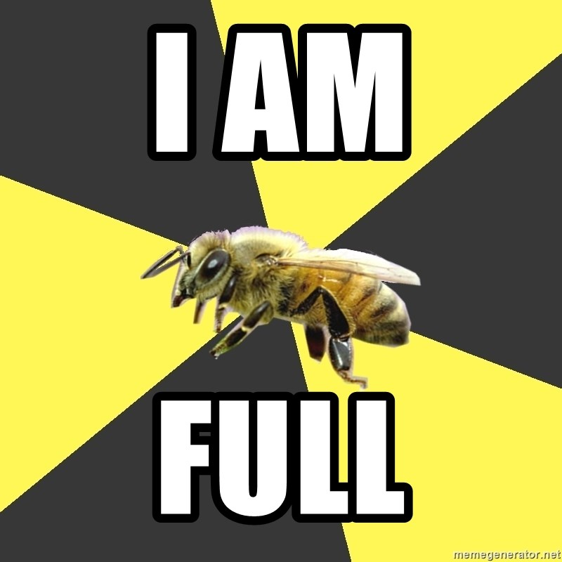 British High School Honeybee - i AM  fULL