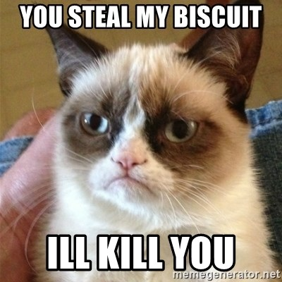Grumpy Cat  - you steal my biscuit  ill kill you