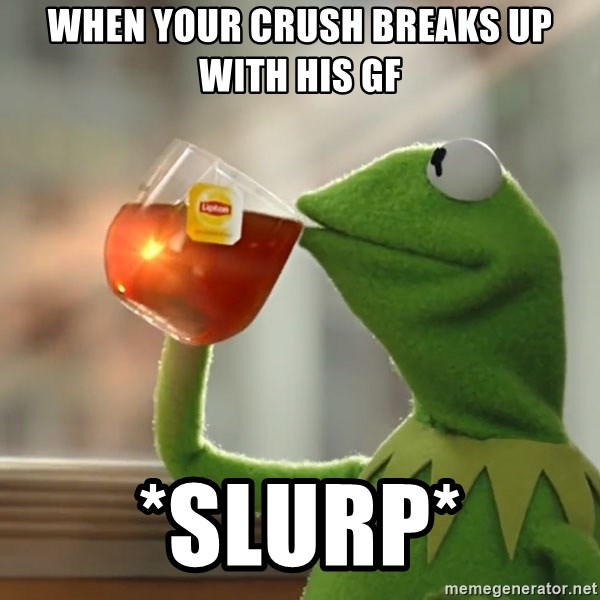Kermit The Frog Drinking Tea - when your crush breaks up with his gf *SlUrp*