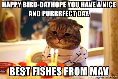 Birthday Cat - Happy bird-dayHope you have a nice and purrrfect day. Best fishes from Mav