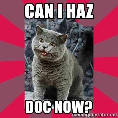 I can haz - Can I haz doc now?