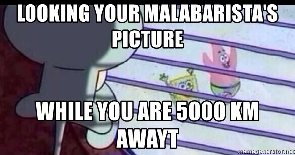 squidward looking out window - looking your malabarista's picture while you are 5000 km awayt