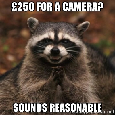 evil raccoon - £250 for a camera? Sounds reasonable