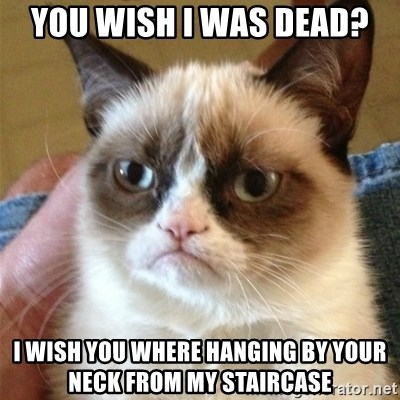 Grumpy Cat  - you wish i was dead? i wish you where hanging by your neck from my staircase