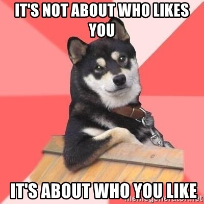 Cool Dog - It's not about who likes you  it's about who you like