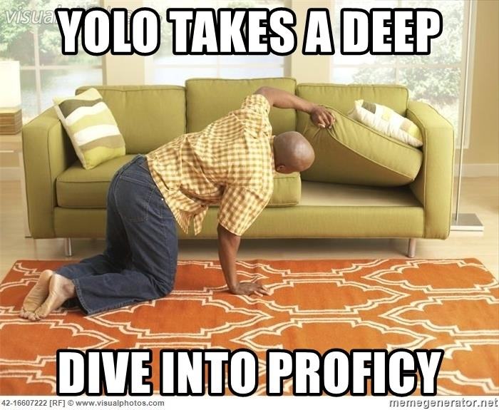 searching joke - yolo takes a deep dive into proficy