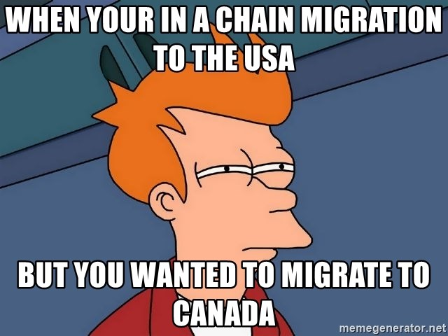 Futurama Fry - When your in a chain migration to the USA  But you wanted to migrate to Canada