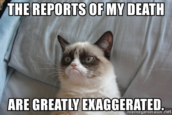 Grumpy cat good - The reports of my death  are greatly exaggerated.