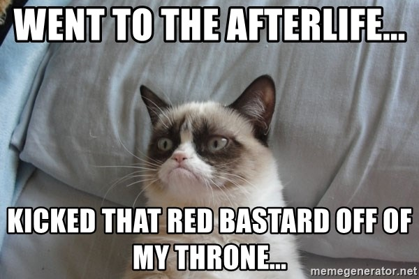 Grumpy cat good - Went to the afterlife...  Kicked that red bastard off of my throne...