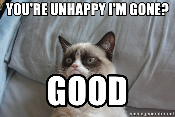 Grumpy cat good - You're unhappy I'm gone? Good