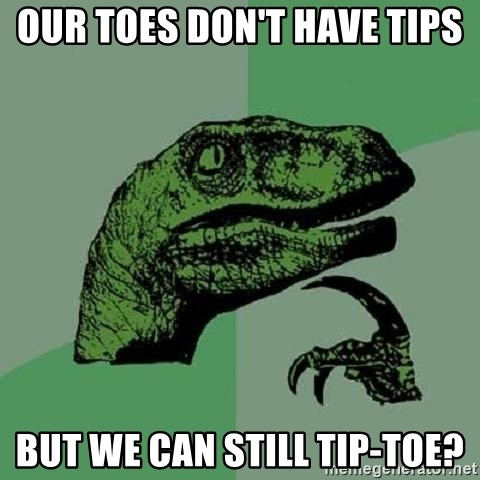 Philosoraptor - Our toes don't have tips but we can still tip-toe?