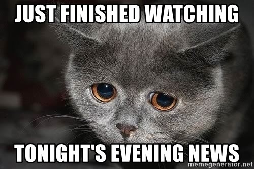 sad cat - Just finished watching tonight's evening news