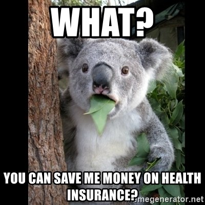 Koala can't believe it - What?  You can save me money on health insurance?