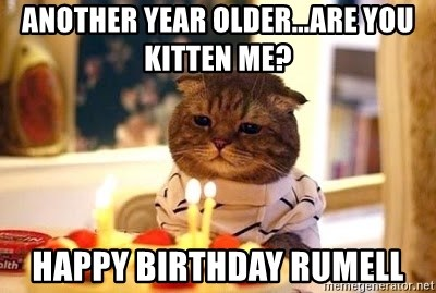 Birthday Cat - Another year older...are you kitten me? Happy birthday rumell
