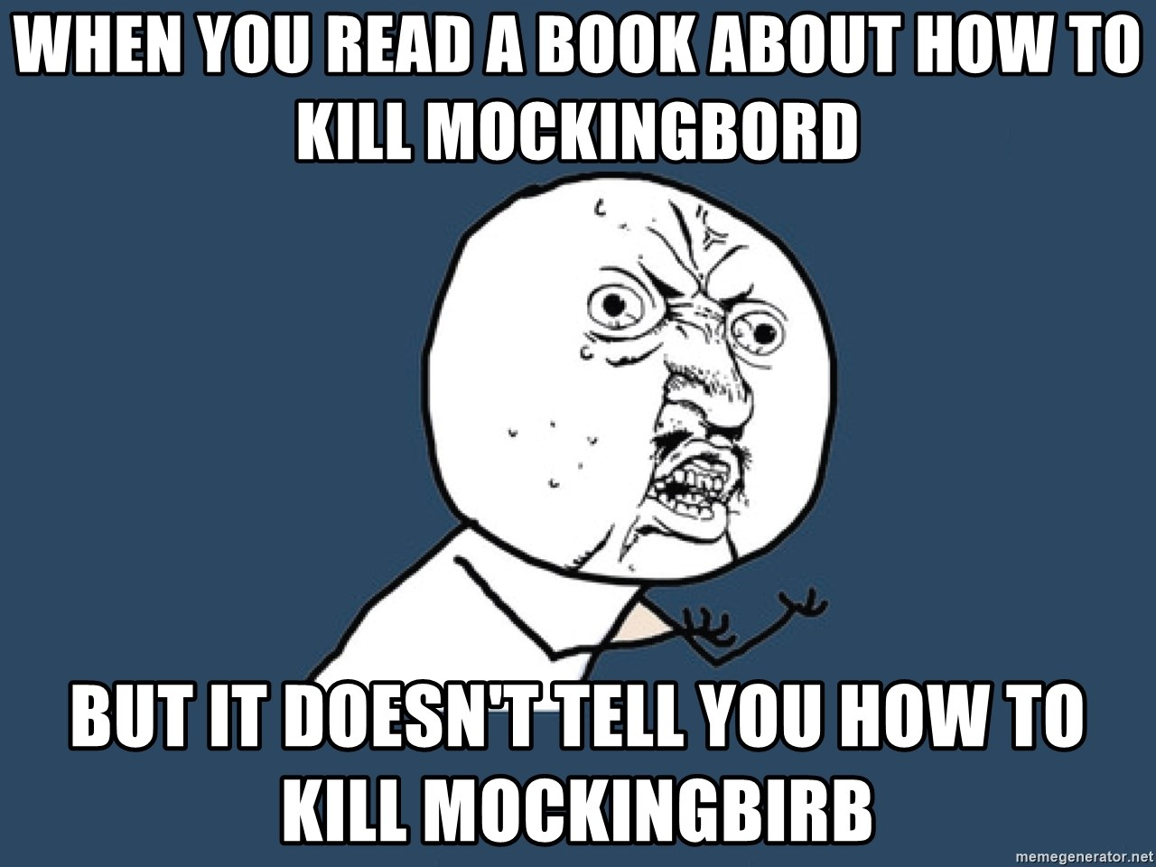 Y U No - when you read a book about how to kill mockingbord but it doesn't tell you how to kill mockingbirb