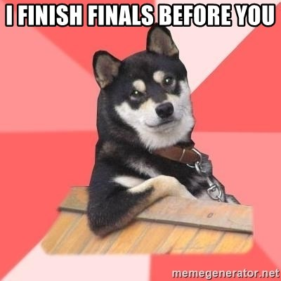Cool Dog - i finish finals before you