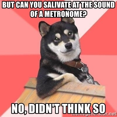 Cool Dog - but can you salivate at the sound of a metronome? no, didn't think so