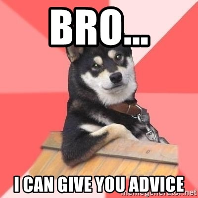 Cool Dog - Bro... I can give you advice