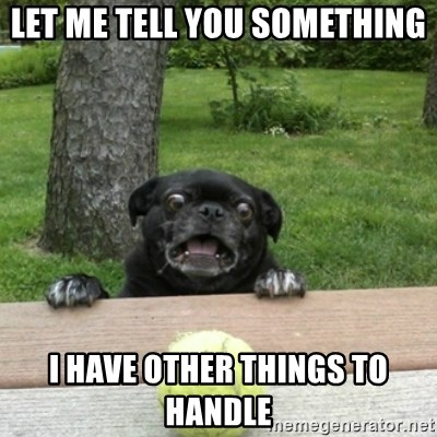 Ermahgerd Pug - let me tell you something i have other things to handle