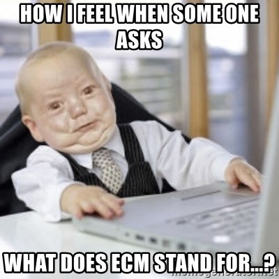 Working Babby - How I feel when some one asks What does ECM stand for...?