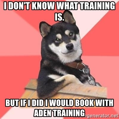 Cool Dog - I don't know what training is. But if I did I would book with Aden Training