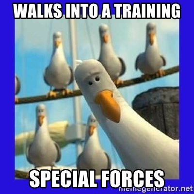 mine seagull - walks into a training Special Forces