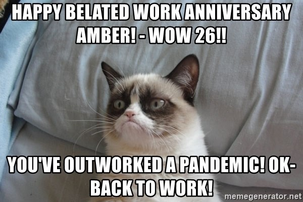 Grumpy cat good - Happy Belated Work Anniversary Amber! - wow 26!! You've outworked a pandemic! Ok-Back to work!
