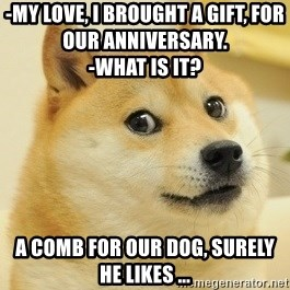 Dogeeeee - -My love, I brought a gift, for our anniversary.                               -What is it? A comb for our dog, surely he likes ...