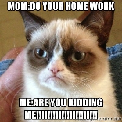 Grumpy Cat  - mom:do your home work me:Are you kidding me!!!!!!!!!!!!!!!!!!!!!!