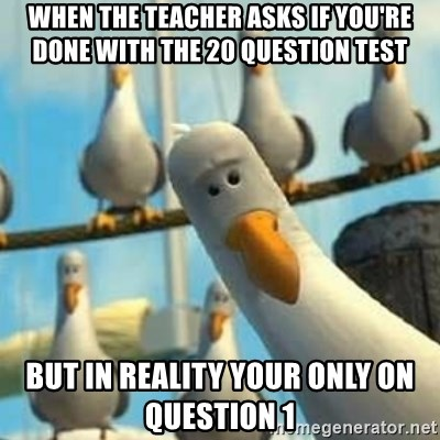 Nemo Seagulls - When the teacher asks if you're done with the 20 question test  But in reality your only on question 1