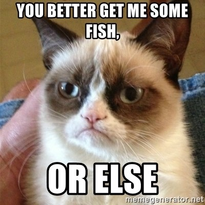 Grumpy Cat  - You better get me some fish, or else