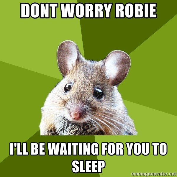 Prospective Museum Professional Mouse - Dont worry Robie  I'll be waiting for you to sleep