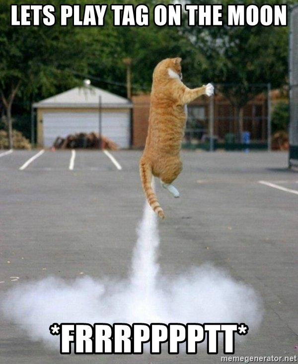 Farting Cat - lets play tag on the moon *frrrpppptt*
