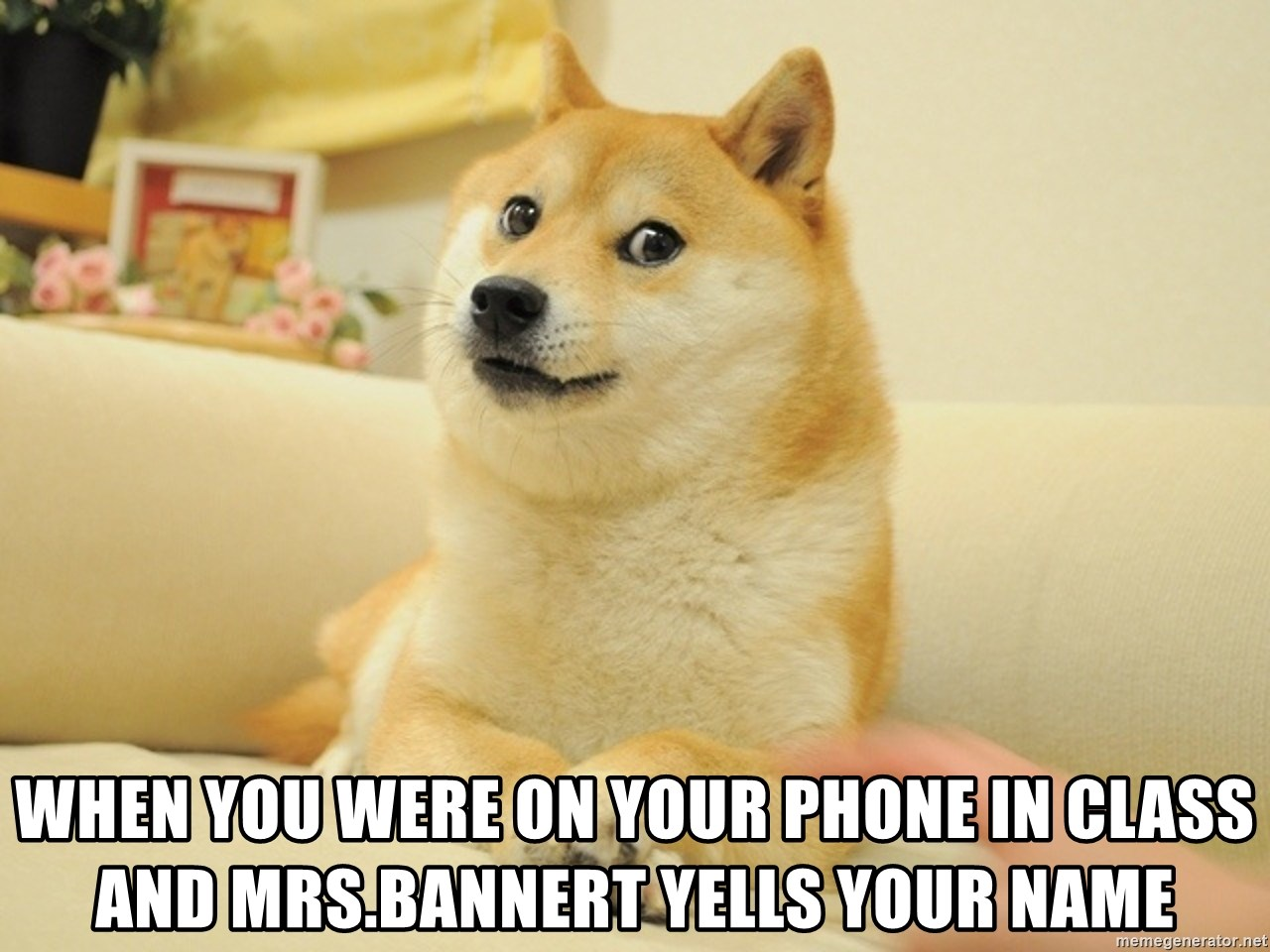 so doge - when you were on your phone in class and Mrs.Bannert yells your name