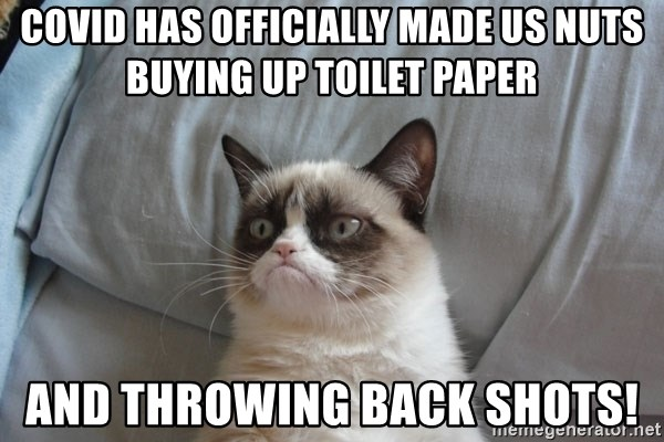 Grumpy cat good - COVID HAS OFFICIALLY MADE US NUTS BUYING UP TOILET PAPER And throwing back shots!