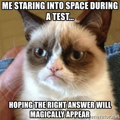 Grumpy Cat  - Me staring into space during a test... Hoping the right answer will magically appear