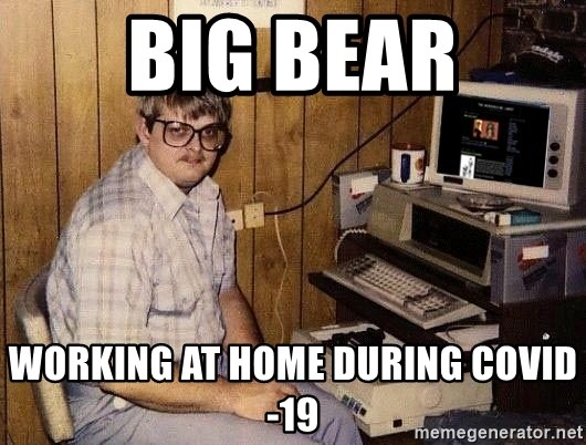 Nerd - Big bear working at home during covid-19