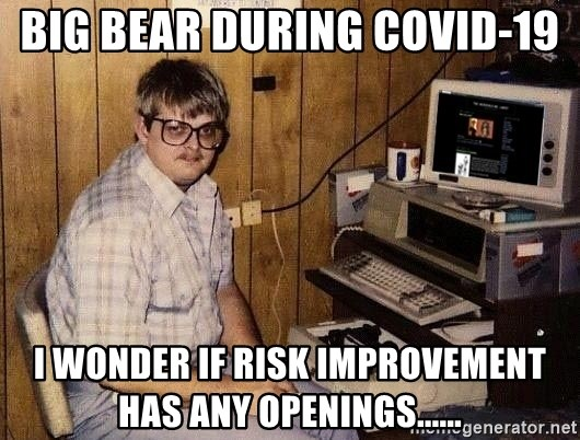 Nerd - big bear during covid-19 i wonder if risk improvement has any openings......