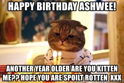 Birthday Cat - HAPPY BIRTHDAY ASHWEE! Another year older are you kitten me?? Hope you are spoilt rotten  xxx