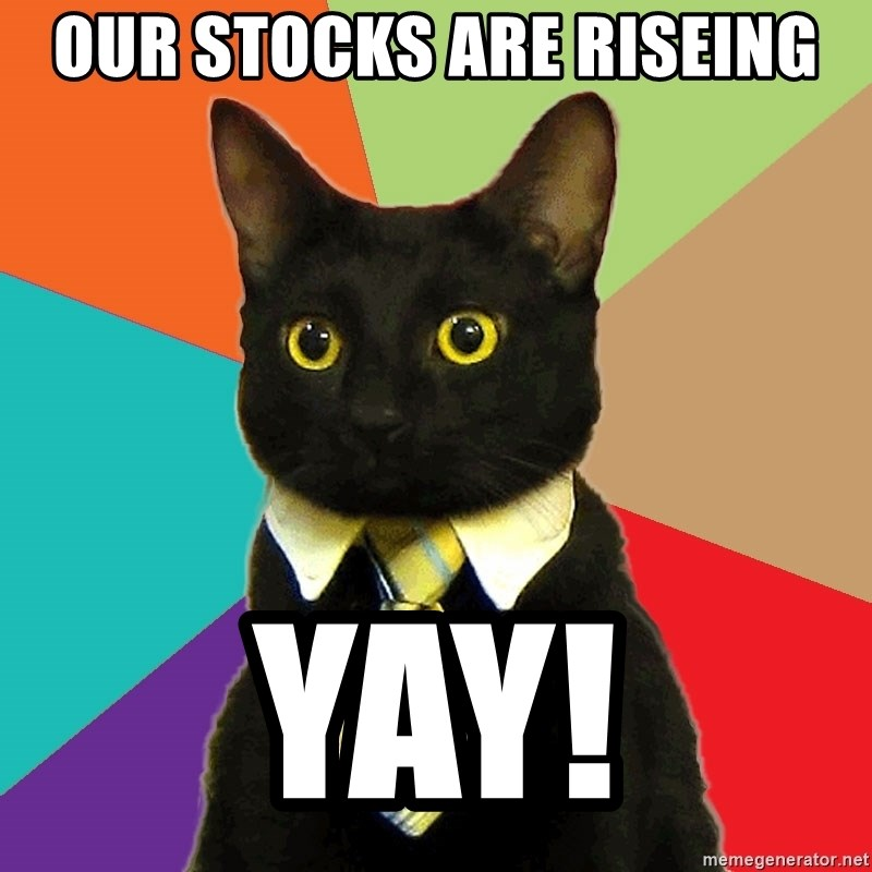 Business Cat - our stocks are riseing yay!